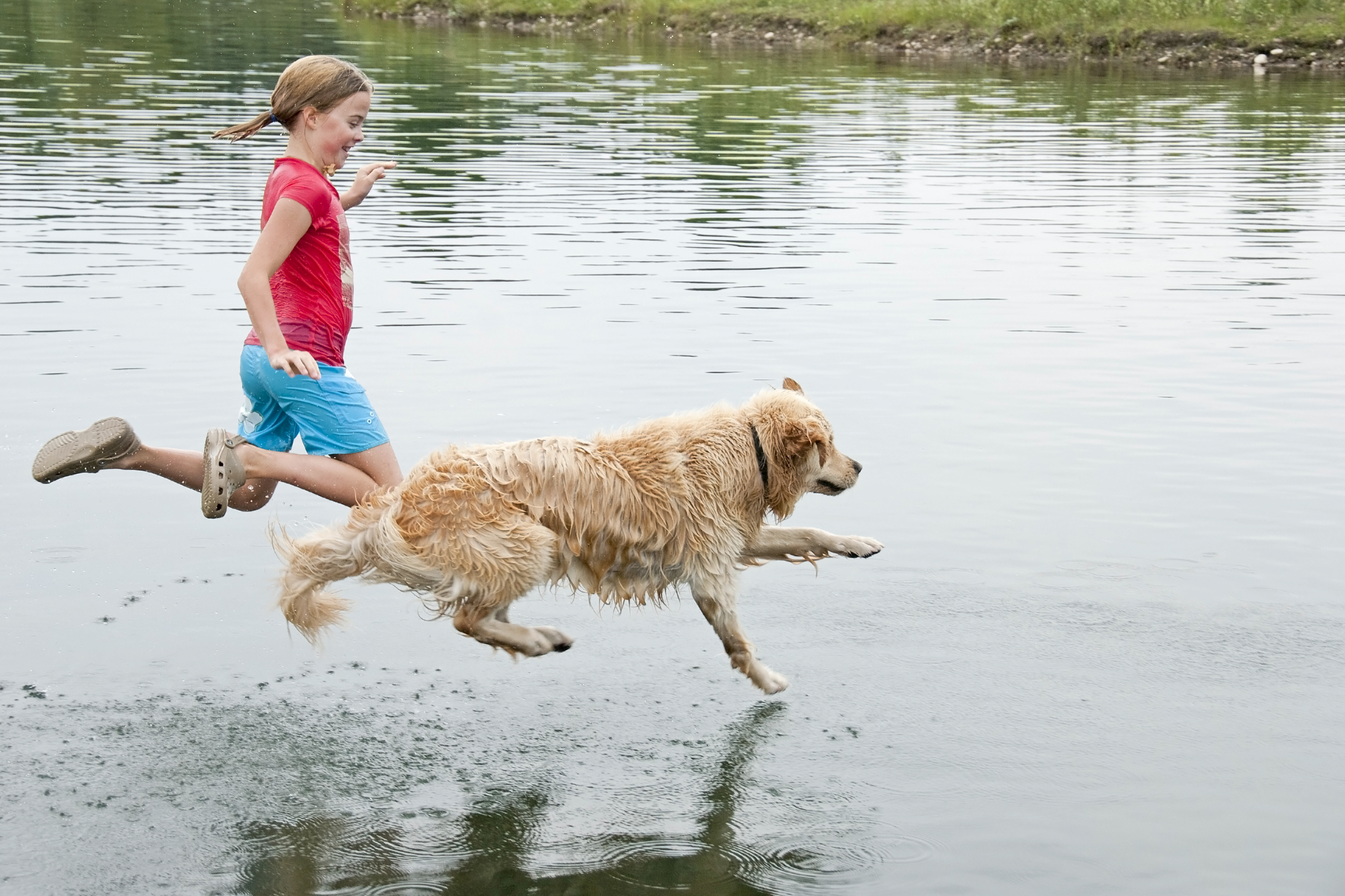 jumping-in-lake-dog-and-girl.jpg