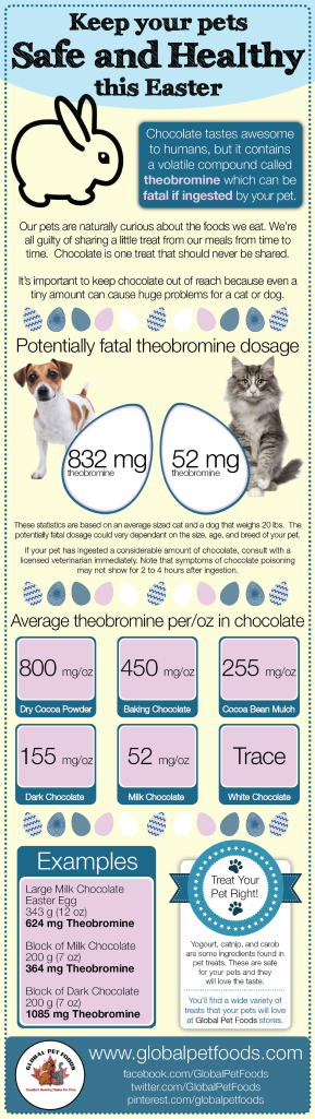 chocolate_infograph-01