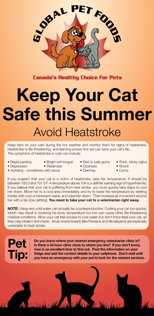 Cats&Heatstroke-01